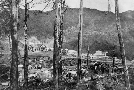 Maungapōhatu settlement