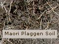 Plaggen soil