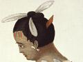 Ngā whakarākei heru, kura hoki