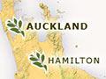 New Zealand herbaria